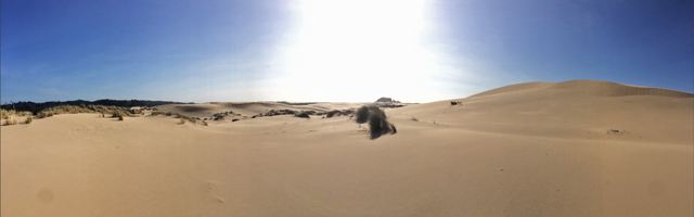 Oregon Dunes